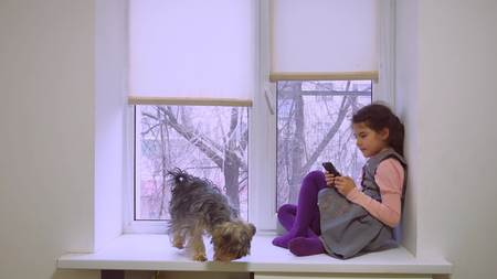 girl teen playing web online the game for smartphone and dog sitting on window sill windowsill pet Stock Photo