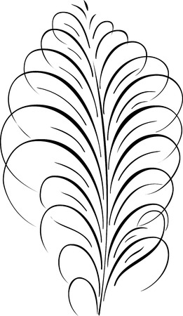 Calligraphic Vector Design, Quill Vector