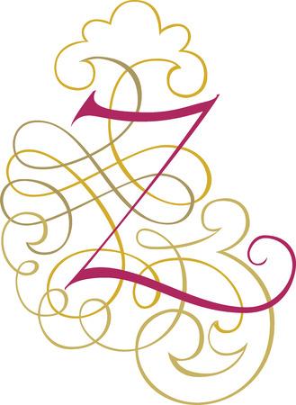 Calligraphic English alphabets, fashionable and stylish letter Z Illustration