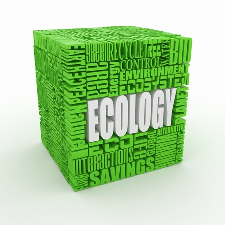 What is a Ecology. The concept of the words on white isolated background. 3d Stock Photo - 10824974