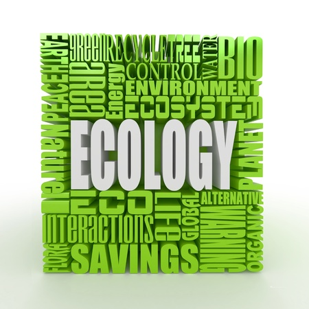 What is a Ecology. The concept of the words on white isolated background. 3d photo