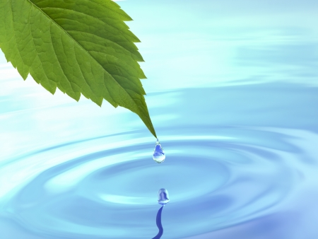 Drop fall from leaf on ripple water  3d photo