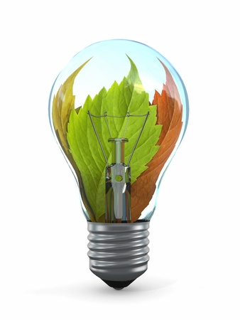 Ecology concept  Light bulb with leaf  3d Stock Photo - 14566994