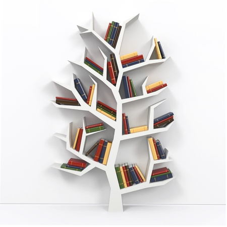 Tree of knowledge  Bookshelf on white background  3d photo