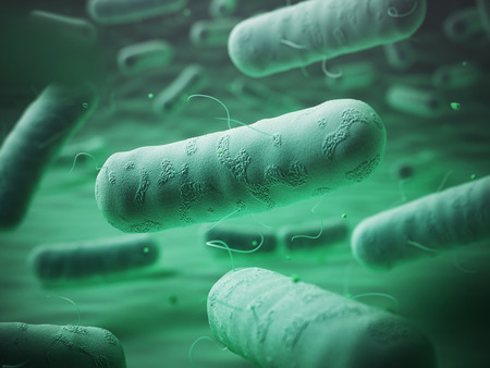 escherichia coli: Enterobacteriaceas. Gram-negative bacterias escherichia coli, salmonella, klebsiella, legionella, mycobacterium tuberculosis, yersinia pestis,  and shigella, proteus, enterobacter, serratia, and citrobacter. 3d illustration