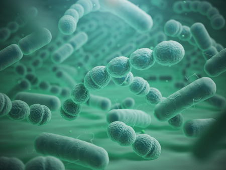 streptococcus: Various bacteria cells in microscope. Streptococcus pneumonia, pneumococcus, enterobacteriaceas, escherichia coli, salmonella, klebsiella and others. 3d illustration Stock Photo
