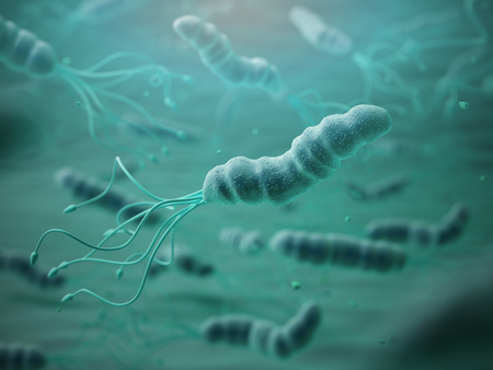 pylori: Helicobacter pylori in microscope.Bactreiias. 3d illustration