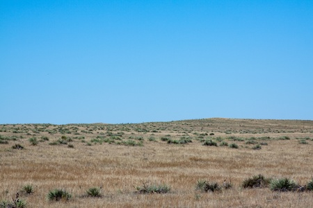 Steppe Stock Photo - 8491883