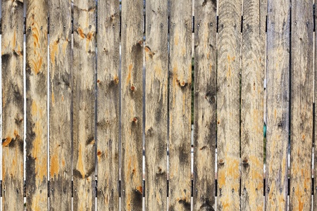 Wood Fence Texture  photo