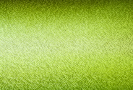 Green leather photo