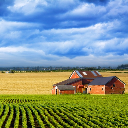 countryside landscape: American Country