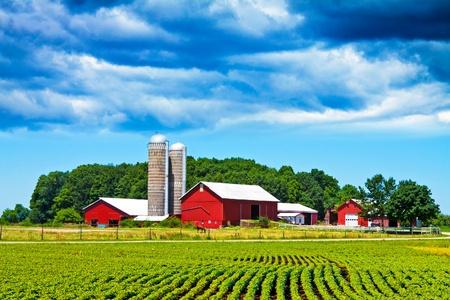 Farm 写真素材