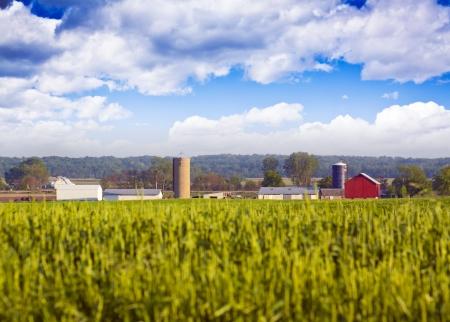 bauernhof: Blurry Feld mit landwirtschaftlichen Geb�uden im Hintergrund Lizenzfreie Bilder