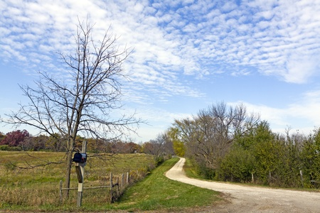 Country Road Stock Photo - 11789590