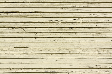 Siding Wood Texture  photo