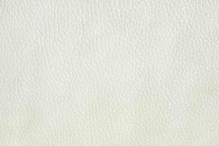 Leather Texture Stock Photo - 12569241