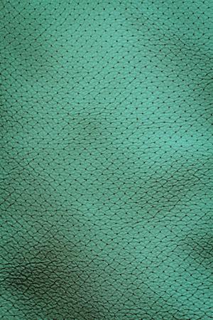 Interior Design - Blue Leather photo