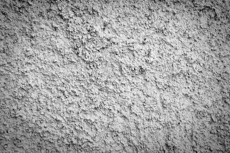 Rock Wall photo