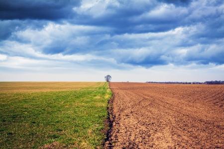 American Farmland with stormy sky