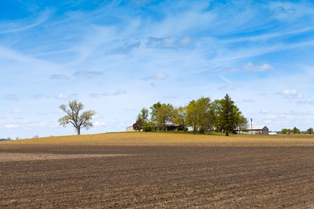 Country Landscape photo