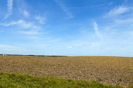 iowa agriculture: Country Landscape