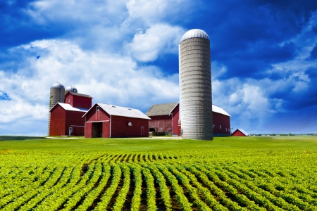 farmlands: American Farm Stock Photo