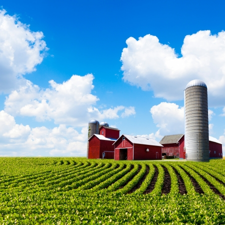 factory farm: American Farm Stock Photo