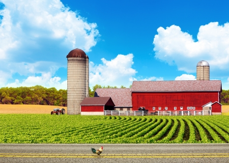 iowa agriculture: American Country Road With Blue Sky