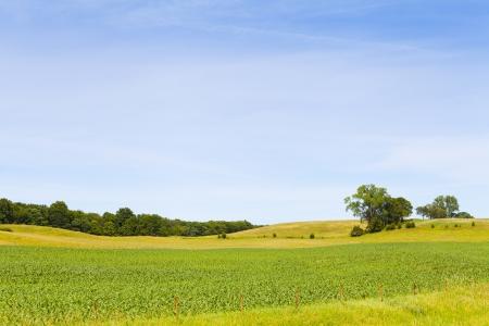 Platteland landschap met blauwe hemel