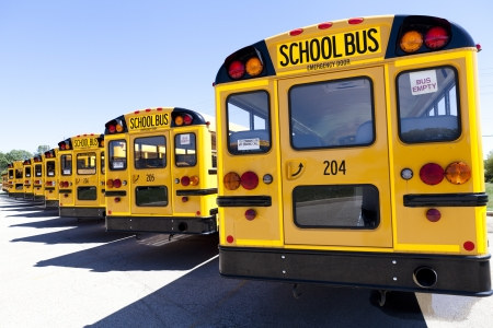 school transportation: Autob�s Escolar Amarillo Con Azul Cielo