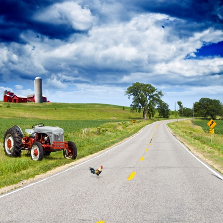 country landscape: American Country Road