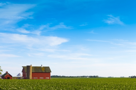 American Farmland With Blue Sky