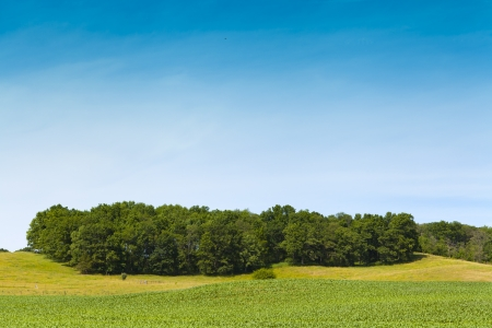 countrified: American Farmland With Blue Sky
