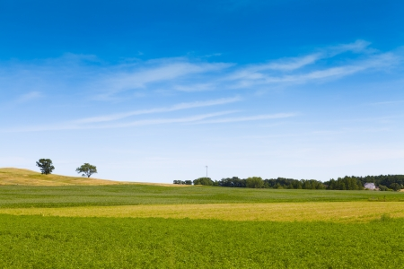 america countryside: American Farmland With Blue Sky
