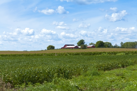 ingenuity: Traditional american Farm With Cloudy Sky