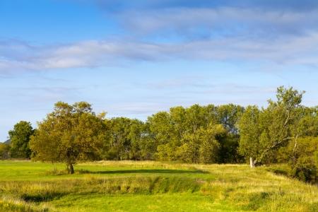 countrified: American Farmland With Blue Sky  Stock Photo