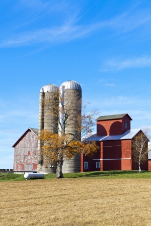 American Countryside With Blue Sky photo