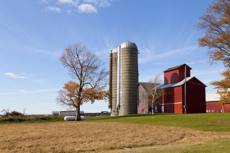 Traditional American Barn (Autumn Season) photo