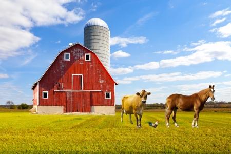 Amerikaanse Platteland Red Farm Met Blauwe Hemel