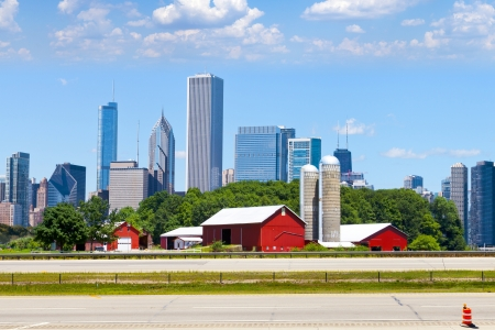 American Red granja con Chicago Skyline en segundo plano photo