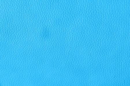 Interior Design - Leather Background photo
