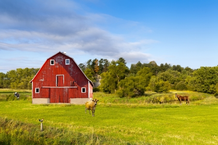 American Countryside With Blue Cloudy Sky  photo