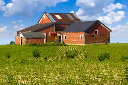 real estate house: American Countryside