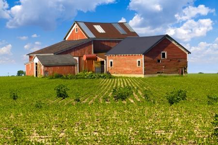 farm house: American Countryside