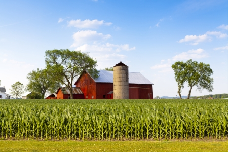 midwest usa: American Countryside
