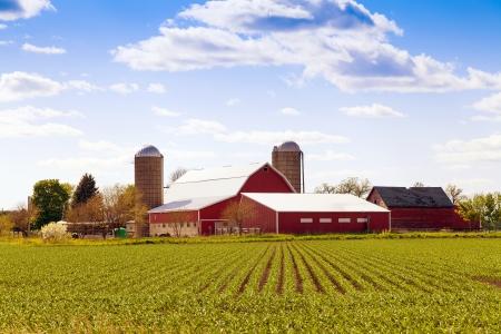 青い空とアメリカの伝統的な農場 写真素材