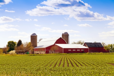 Traditional American Farm With Blue Sky  photo