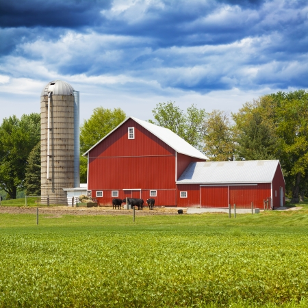 American Farmland With Blue Cloudy Sky