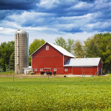 Amerikaanse Landbouwgrond Met Blauwe Bewolkte Hemel