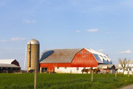 American Farmland With Blue Cloudy Sky Stock Photo - 20061549